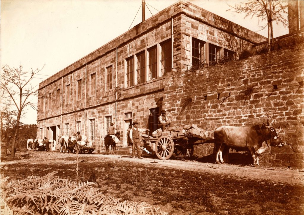 storia fattoria di petrognano